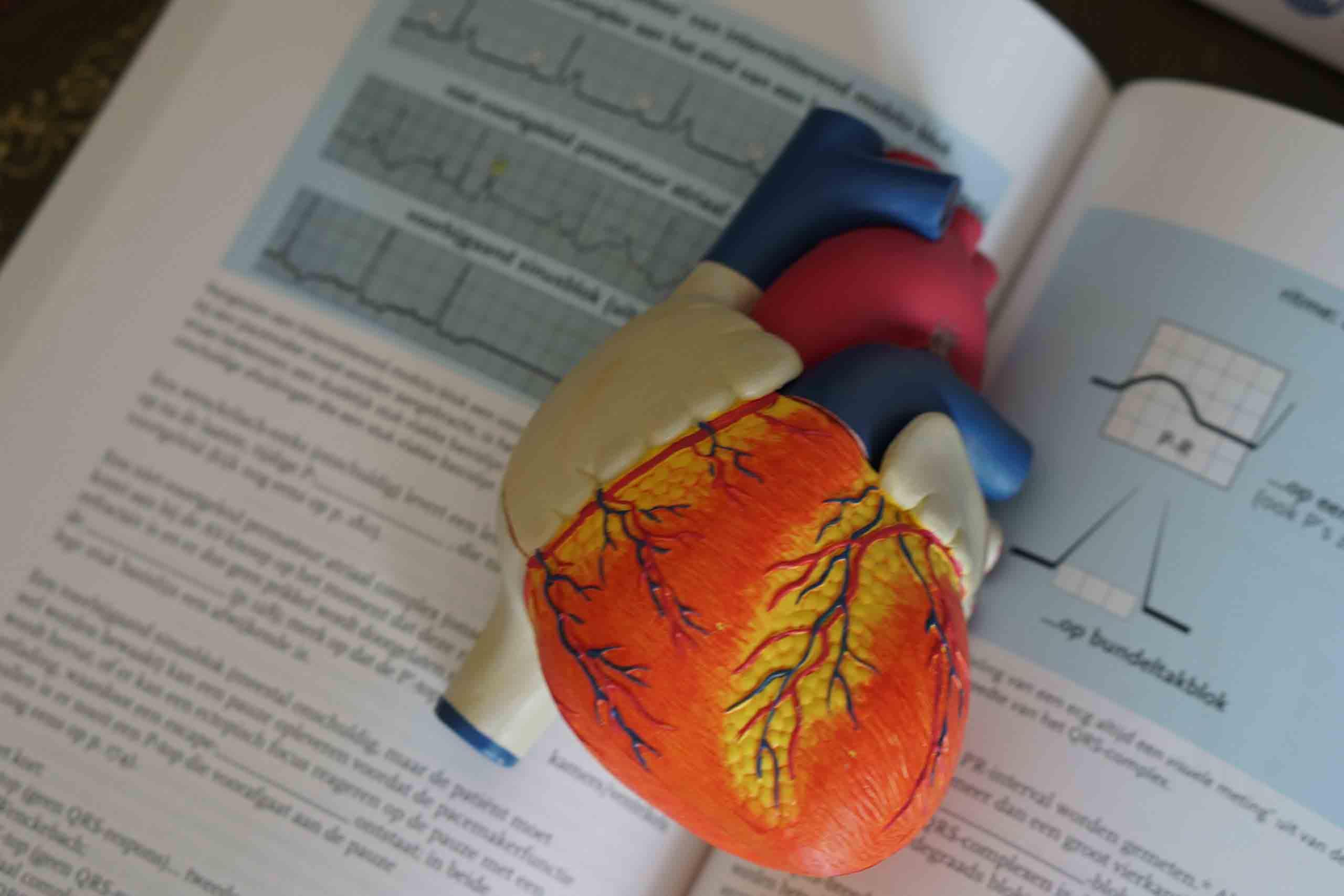 First Aid, CPR & AED Training Certification Cincinnati