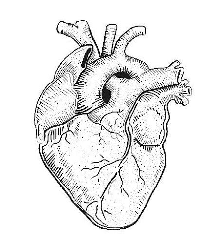 What Happens During Cardiac Arrest