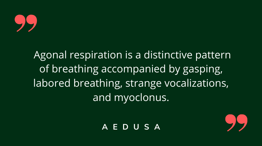 Agonal Breathing or Respirations